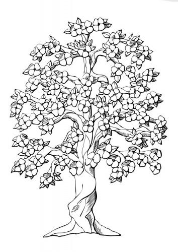 Kleurplaat boom met bloesems