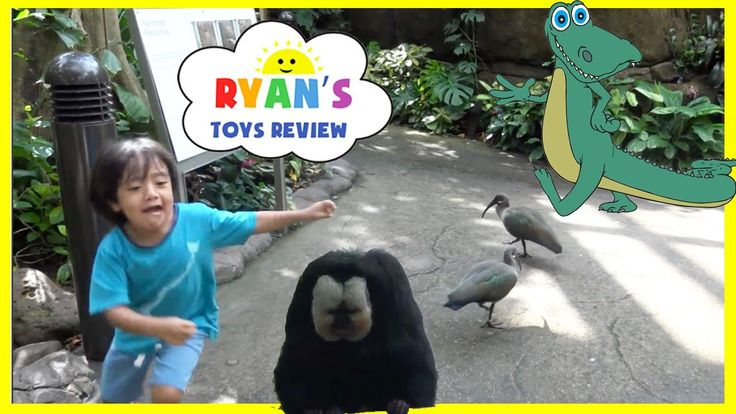 awesome KIDS Family Fun Trip to Rainforest Animals Children Learning Toys for Kids Video Ryan ToysReview