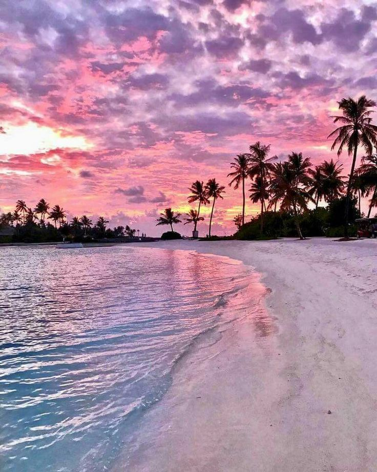 I picked this picture as an example of travel photography because i really liked the way the picture has the sunset, water and palm trees beautifully put together. the sunset reflects off the water and the palm trees almost silhouette with the rest