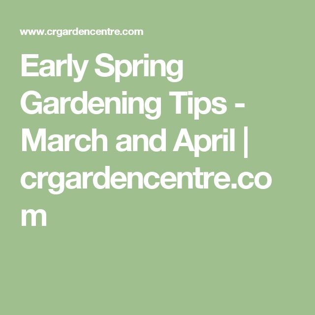 Early Spring Gardening Tips - March and April | crgardencentre.com