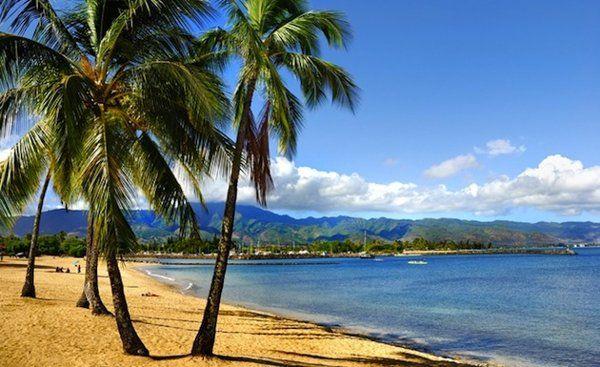 A great winter destination: Oahu.