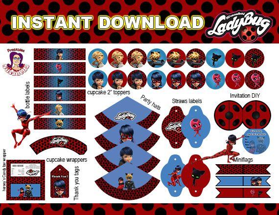 Con este kit de Ladybug podrás crear una fiesta temática increíble! En Susaneda imprimibles tenemos todo tipo de accesorios para tus fiestas temáticas!