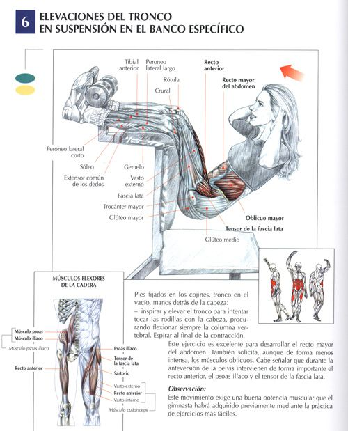 exercises--  I do these, a little differently but use the same muscles.