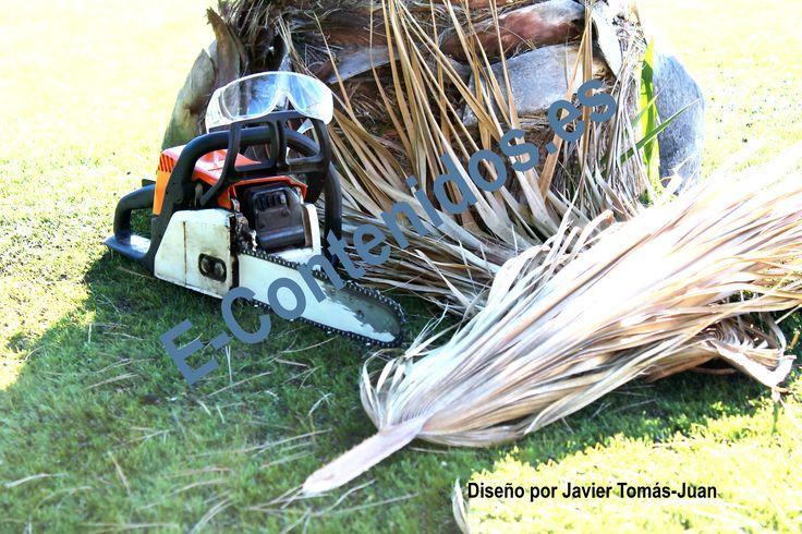 Informa sobre consejos de seguridad cuando se realizan trabajos de jardinería.