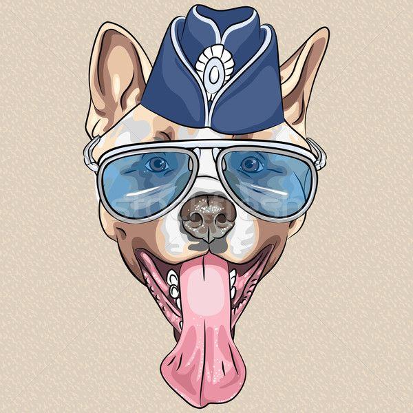 vector funny cartoon hipster dog American Akita - прыжок.