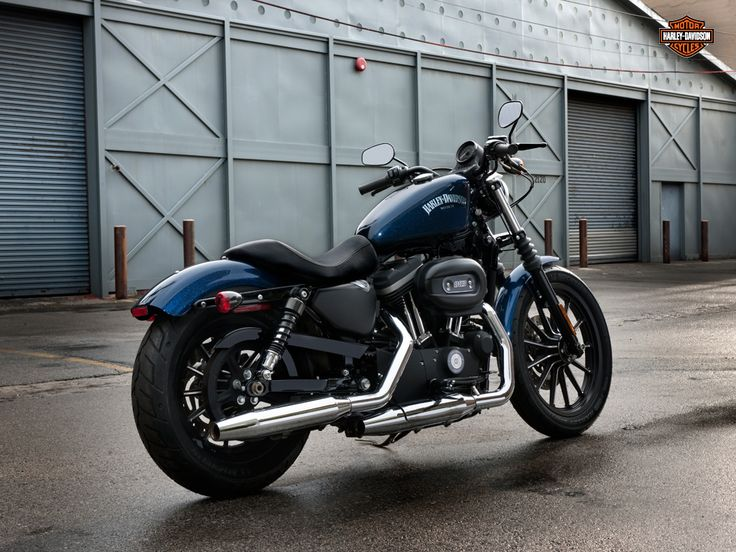 Harley Davidson Iron 883  Sat on one today...think this is the one for me.