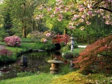 Okouzlily vás japonské zahrady?