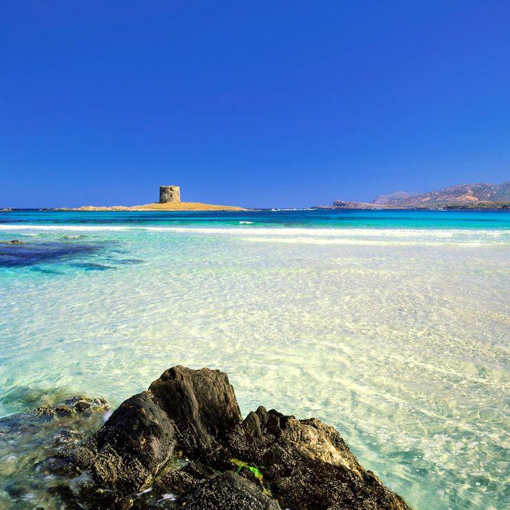 La Pelosa beach, Stintino, Sardinia, Italy ✯ ωнιмѕу ѕαη∂у