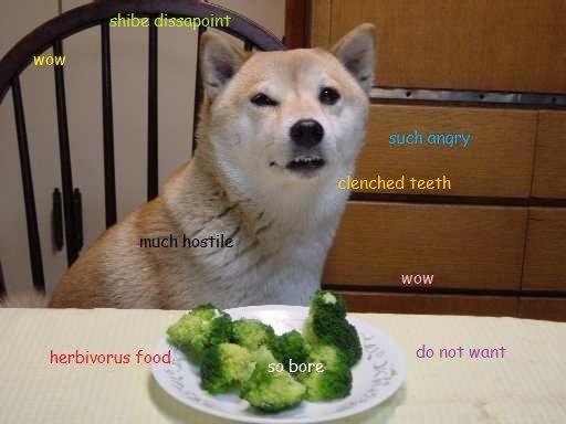 Broccoli Dog Treats