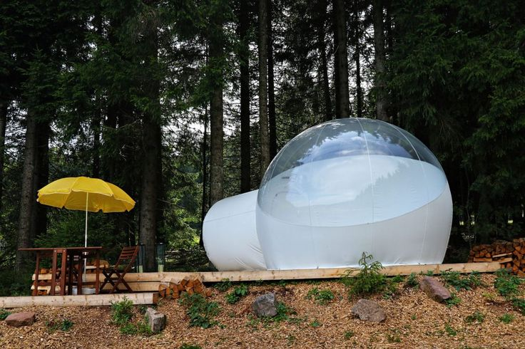 Bubble-Tent Schwarzwald