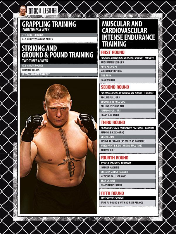 Brock Lesnar MMA Muscular & Cardio Intense Endurance Training