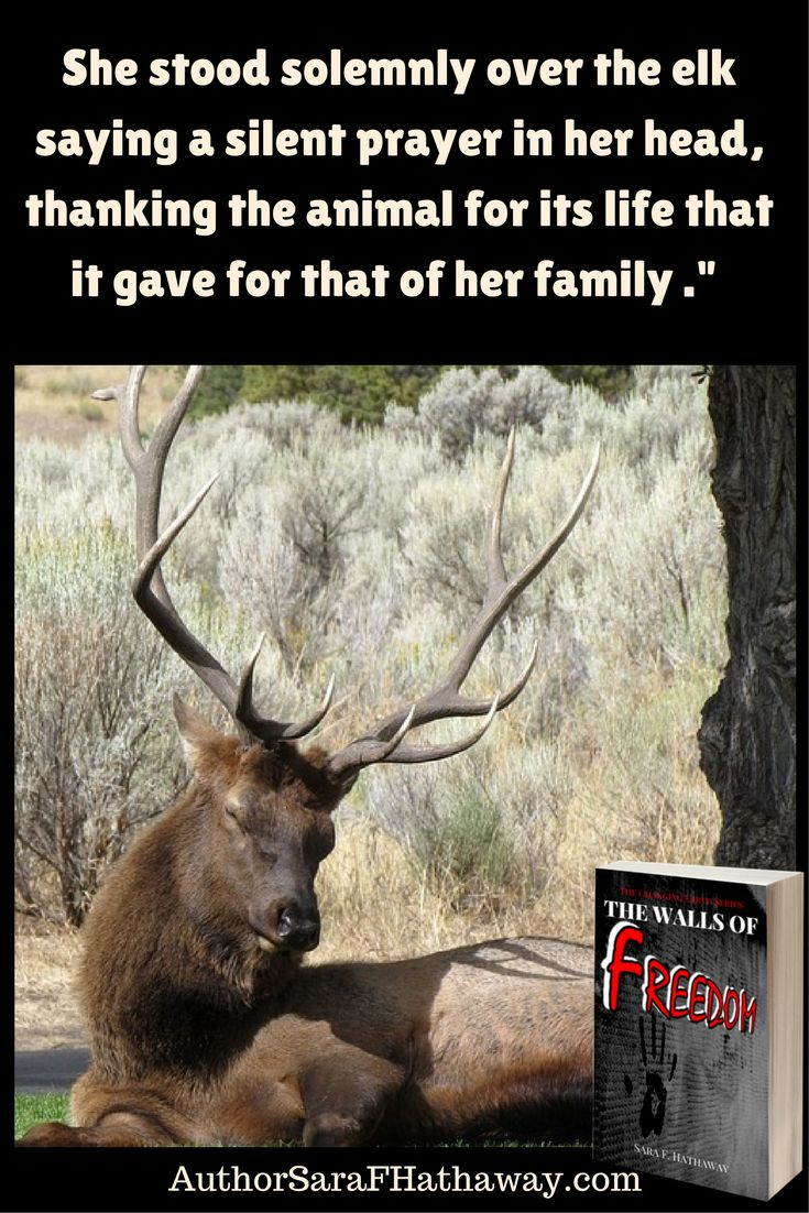 """""""She stood solemnly over the elk saying a silent prayer in her head, thanking the animal for its life that it gave for that of her family."""" Quote from the apocalyptic adventure The Walls of Freedom"""