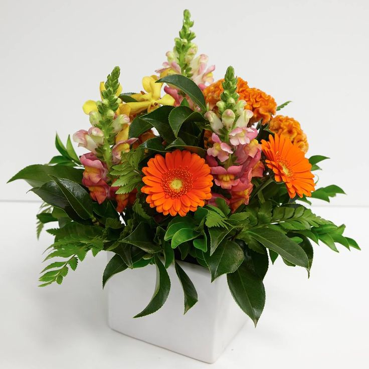 Orange Sorbet Office Arrangement