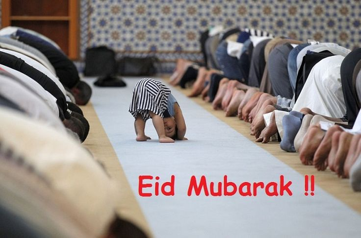 """ Ramadan: Eid Mubarak !!!! "" ~ Festivals and Days  More Eid Quotes :  http://excellentquotations.com/quote-by-id?qid=79901 http://excellentquotations.com/quotes-by-keywords?kw=Ramadan"