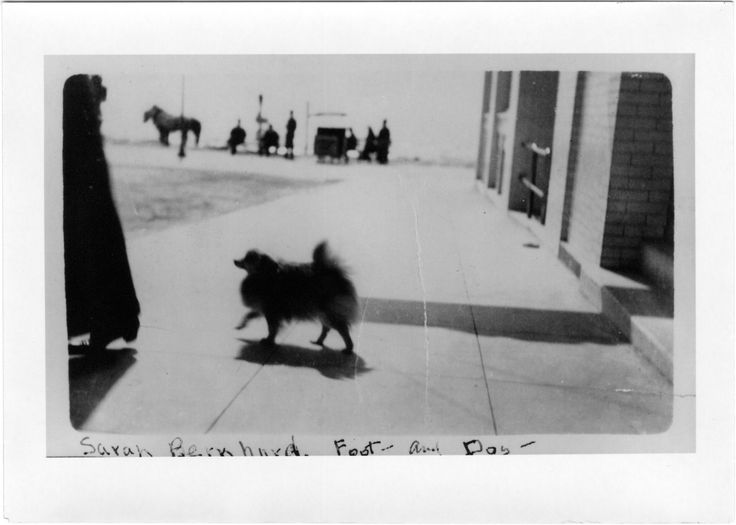 From Sarah Bernhard, foot and dog. Sysid 99980. Scanned as tiff in 2008/10/21 by MDAH. Credit: Courtesy of the Mississippi Department of Archives and History