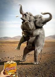 silver chains wholesale  imagen con un toque de  humor reflejando una  idea clara  con un concepto fuera de lo cotidiano    elefantes  publicidad  creativa  mkt