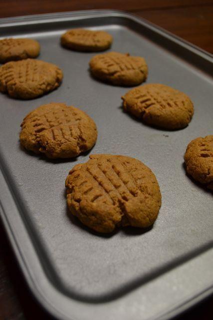 EASY peanut butter protein cookies peanut butter, protein, eggs, cinnamon, vanilla extract