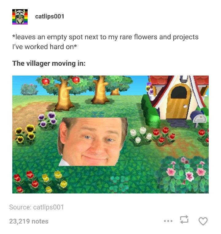 Pin By Anna Rose On Animal Crossing Animal Crossing Funny Animal Crossing Memes Animal Crossing