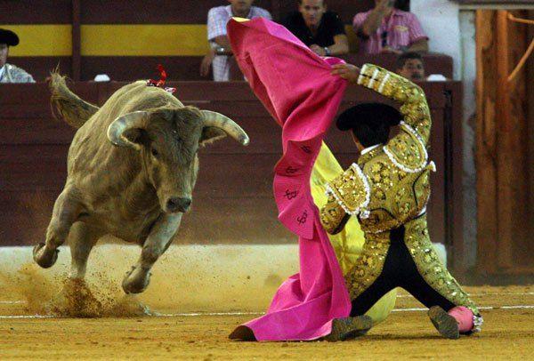 Recibiendo al toro a porta gayola.
