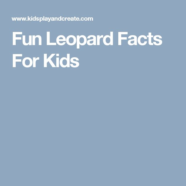 Fun Leopard Facts For Kids