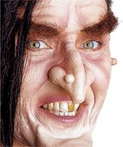 The Miller had a wart on his nose, similar to this witch.