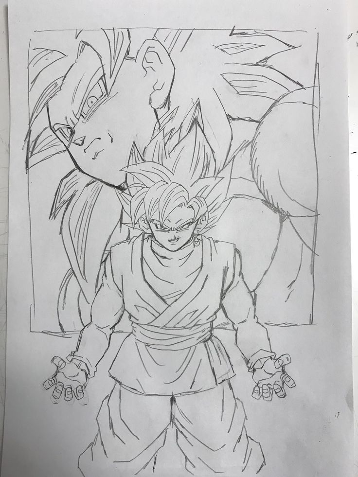 SSJ 4 Goku vs SSR Goku Black