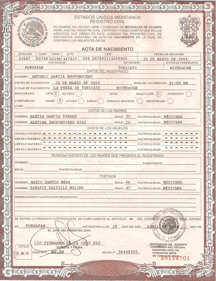 Best 25+ Birth certificate form ideas on Pinterest Obtain birth - birth certificate template for school project