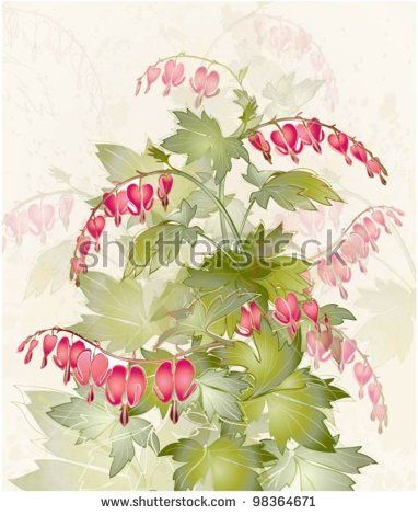 stock-vector-illustration-bleeding-heart-dicentra-spectabilis-greeting-card-with-flower-98364671.jpg (382×470)