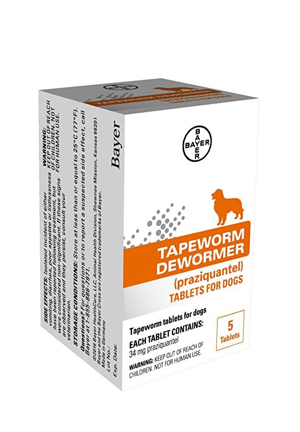 Bayer Tapeworm Dewormer For Dogs 4 Weeks And Older Dogs Dog Health Cat Pet Supplies