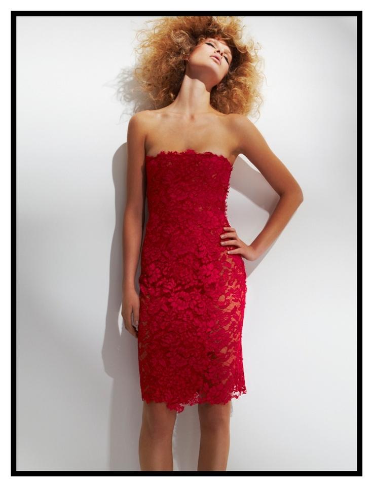 Cherry Lace Corset Dress
