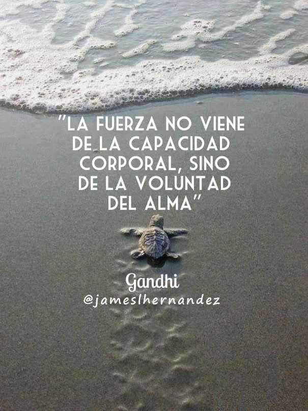 ✿ Quote / Inspiration in Spanish / motivation for learning Spanish / Spanish podcast - Repin for later!