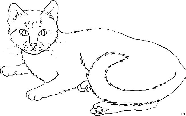 13 best images about malvorlagen acryl on pinterest  cats