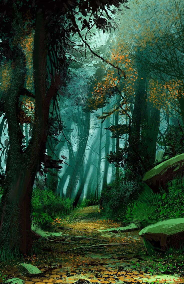 Best 25 Forest Drawing Ideas On Pinterest