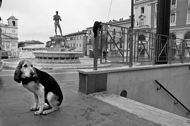 Remember L'AQUILA (Italy). Earthquake april 6th 2009