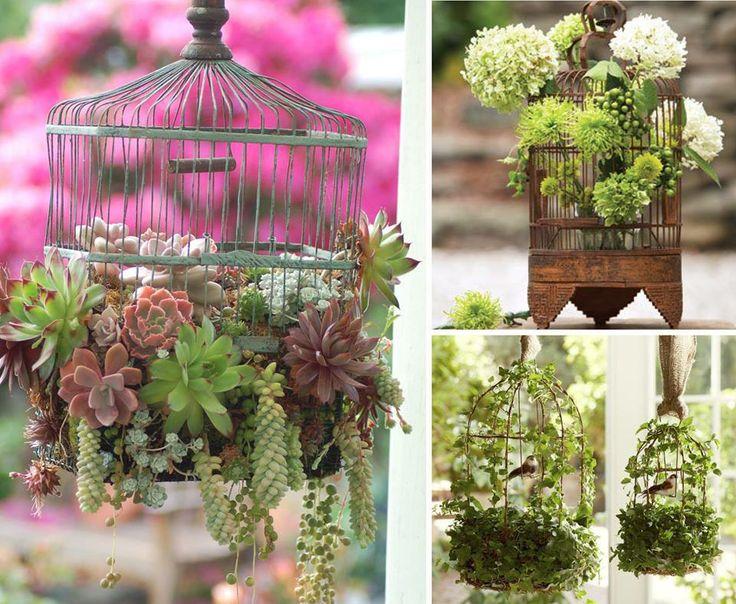 Suculentas jaulas jardin balcon decoracion del hogar frey for Jardines en lata