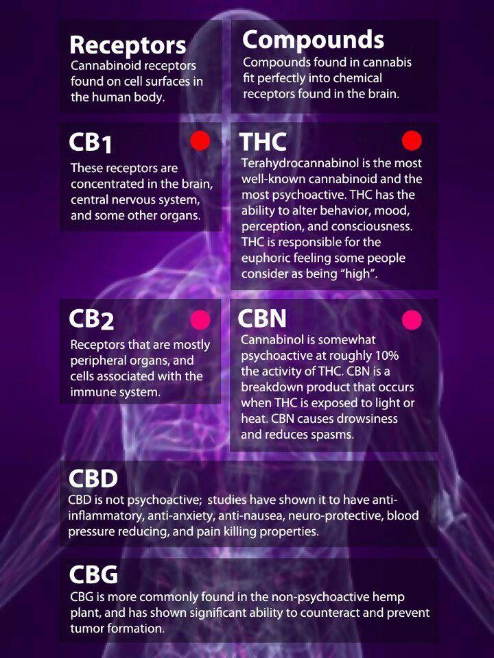 Thc cbd | Cannabis | Pinterest | The o'jays and Cheat sheets