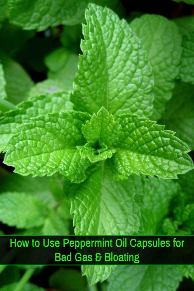 Peppermint Oil Capsules for Bloating and Bad Gas - What makes peppermint oil so effective at preventing bloating, flatulence and other digestive problems and how to take peppermint oil capsules correctly to avoid side effects.