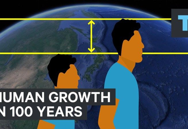 How much taller humans have gotten in the last era?