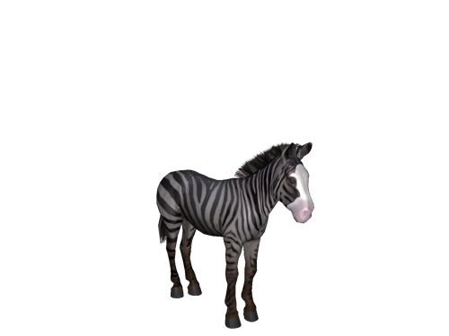 [Horse Game: l:KK:l Iredescent ஜ the level 5 Rainbow Zebra Stallion]