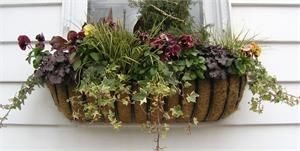 Black wrought iron window box.  Found for sale on www.gardenartisans.us