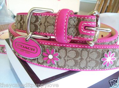 New Coach Daisy Flower Around Grommet XS Small Medium Large Dog Collar XS s M L | eBay