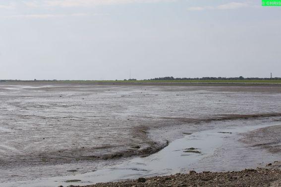 Waddeneiland :Schiermonnikoog