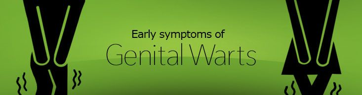 The early symptoms of genital warts are similar in both ...  The early sympt...