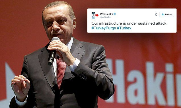Wikileaks comes under 'sustained attack' over Turkey government docs