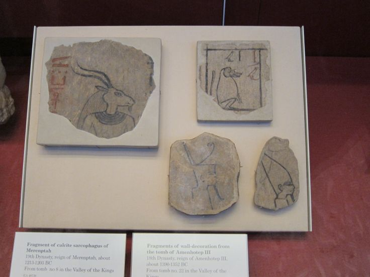 Sarcophagus fragments