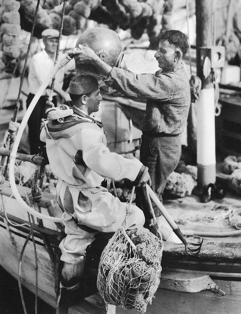 Tarpon Springs Sponge Diver 1936