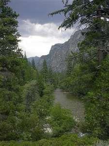 Kings Canyon National Park: California National, Buckets Lists, Coast Buckets, Beautiful Places, National Parks,  Vale, Beautiful Things, Travel K Canyon, Canyon National