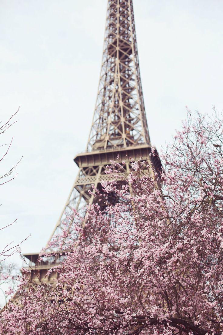 paris-eiffel-tower-