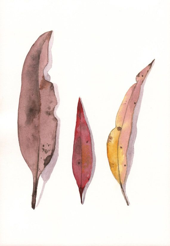 Eucalyptus Leaves Painting 2  ORIGINAL watercolor by Splodgepodge, $45.00