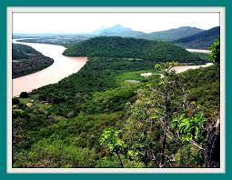 Imágenes de Bosque tropical